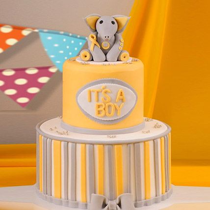 Elephant Theme Baby Shower Cake 16 Portions Vanilla