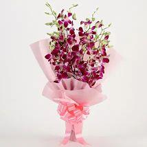Splendid 6 Purple Orchids Bouquet
